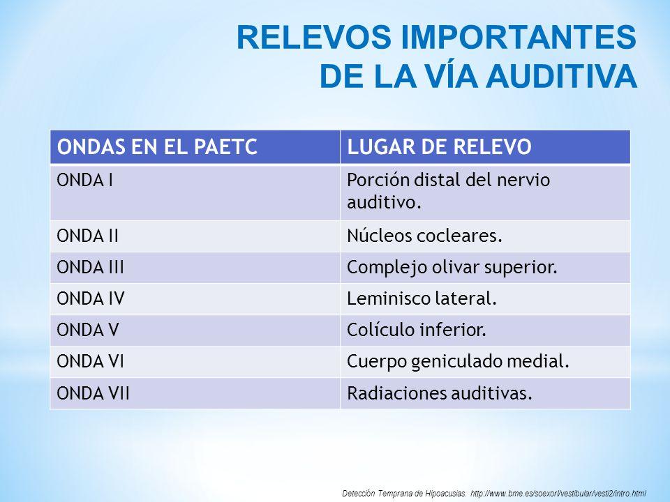 RELEVOS IMPORTANTES DE LA VÍA AUDITIVA ONDAS EN EL PAETC