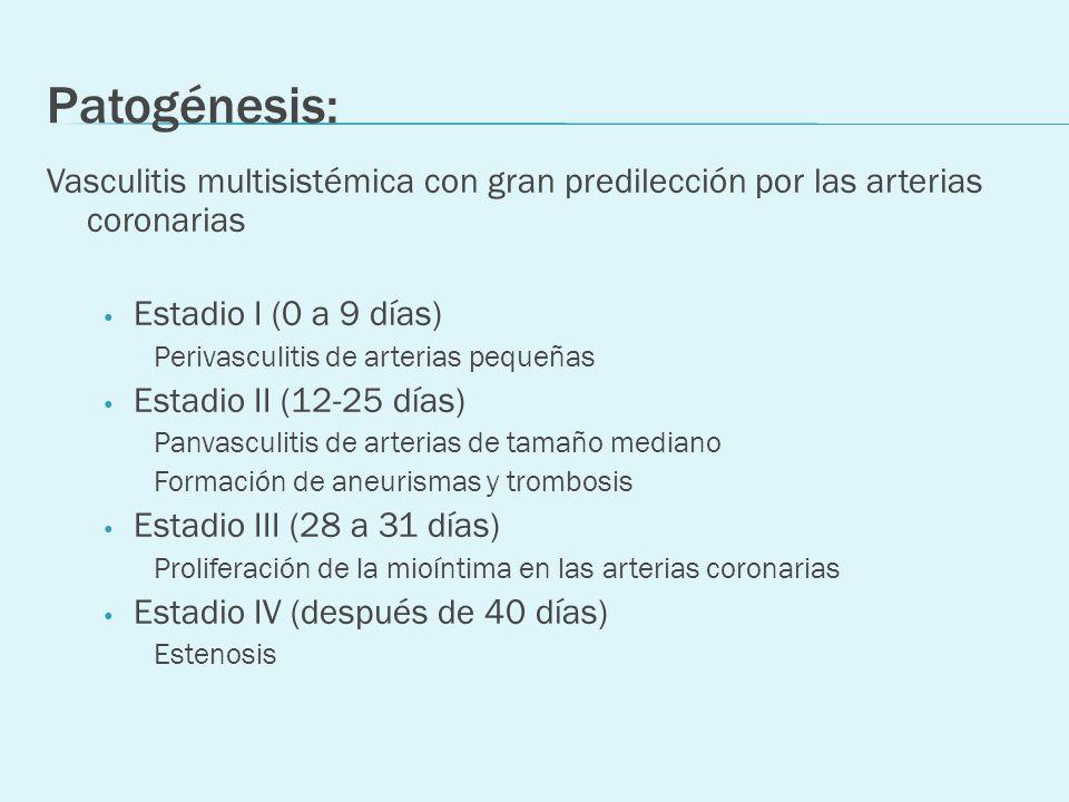 Patogénesis: Vasculitis multisistémica con gran predilección por las arterias coronarias. Estadio I (0 a 9 días)