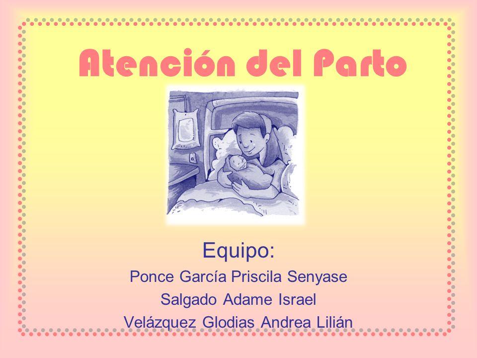 Atención del Parto Equipo: Ponce García Priscila Senyase