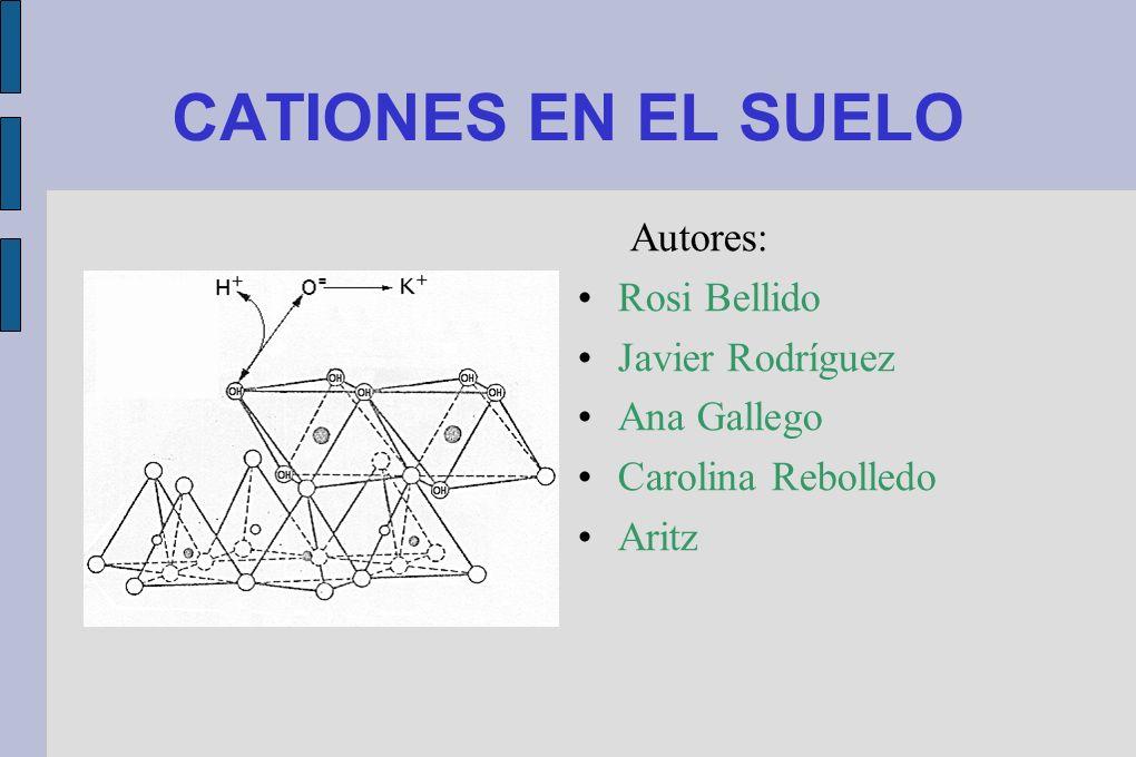 CATIONES EN EL SUELO Autores: Rosi Bellido Javier Rodríguez