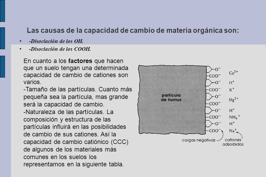 Las causas de la capacidad de cambio de materia orgánica son: