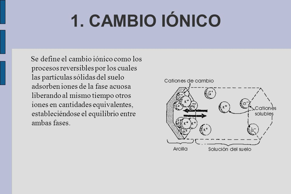 1. CAMBIO IÓNICO