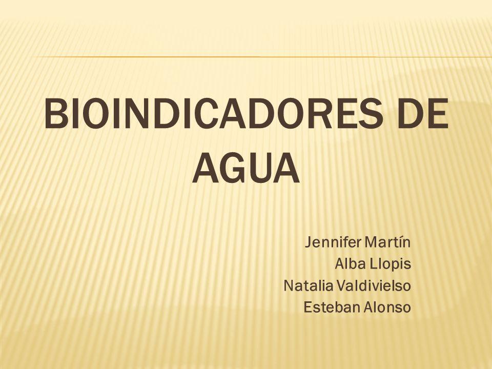 BIOINDICADORES DE AGUA