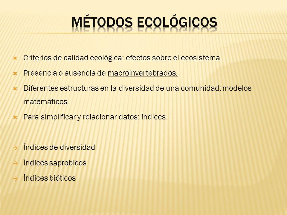 Métodos ecológicosCriterios de calidad ecológica: efectos sobre el ecosistema. Presencia o ausencia de macroinvertebrados.