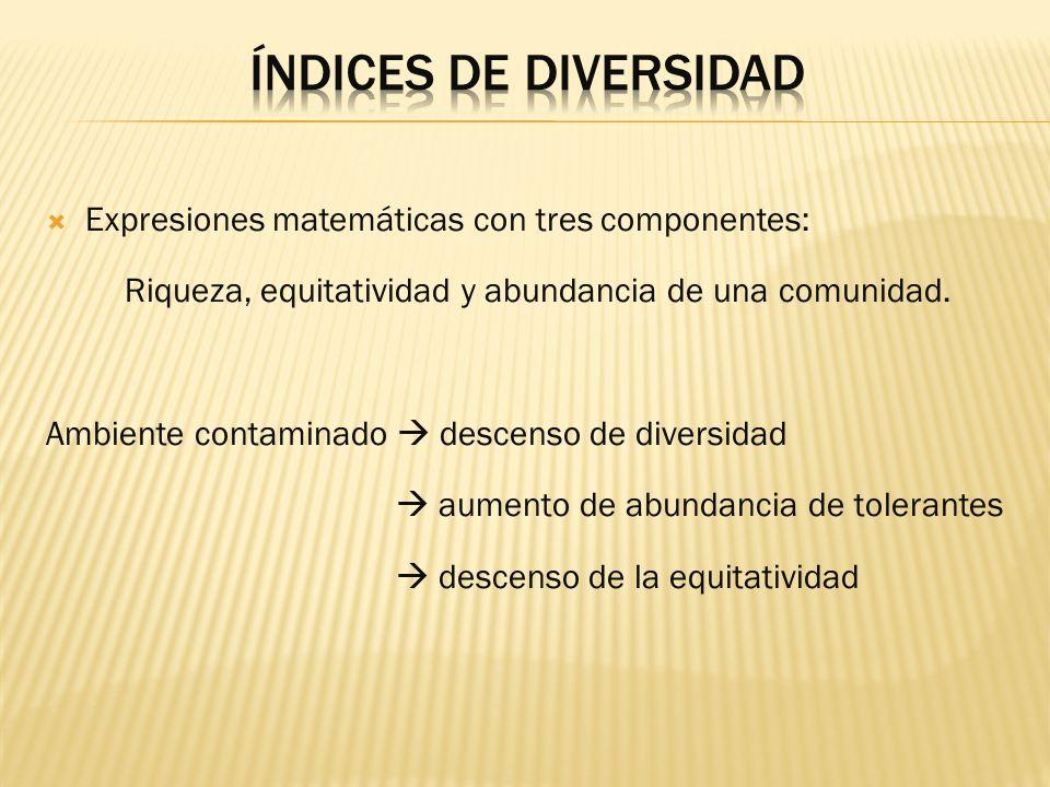 Índices de diversidad Expresiones matemáticas con tres componentes: