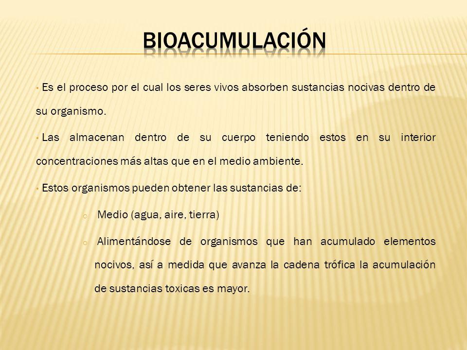 BIOACUMULACIÓNEs el proceso por el cual los seres vivos absorben sustancias nocivas dentro de su organismo.
