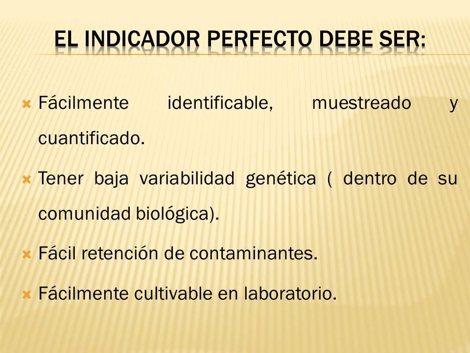 El indicador perfecto debe ser: