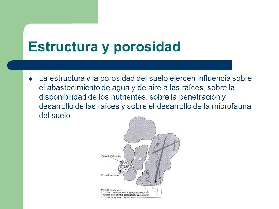 Estructura y porosidad