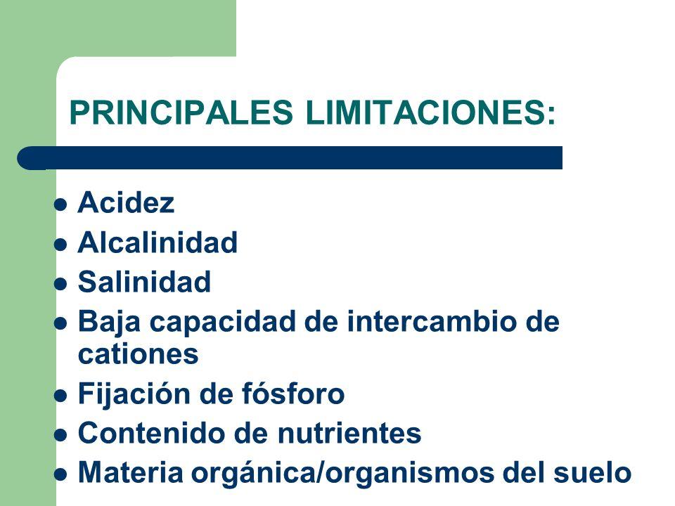 PRINCIPALES LIMITACIONES: