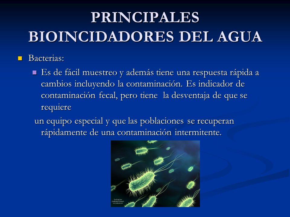 PRINCIPALES BIOINCIDADORES DEL AGUA