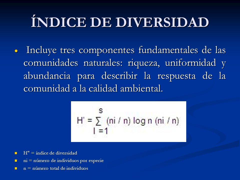 ÍNDICE DE DIVERSIDAD