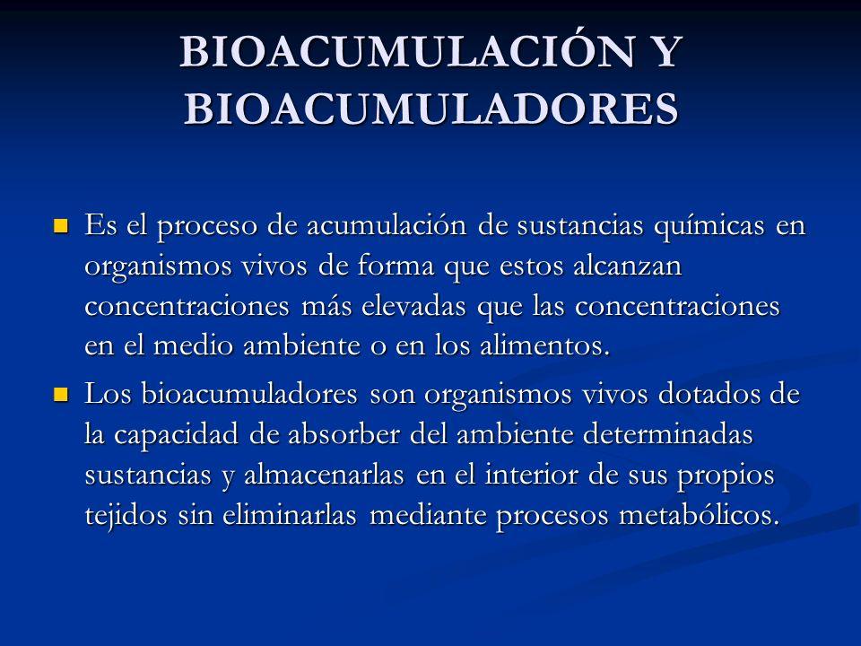 BIOACUMULACIÓN Y BIOACUMULADORES