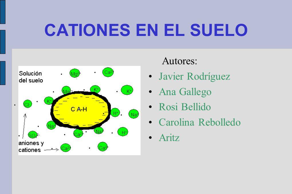 CATIONES EN EL SUELO Autores: Javier Rodríguez Ana Gallego
