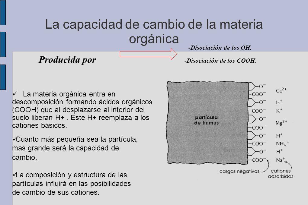 La capacidad de cambio de la materia orgánica