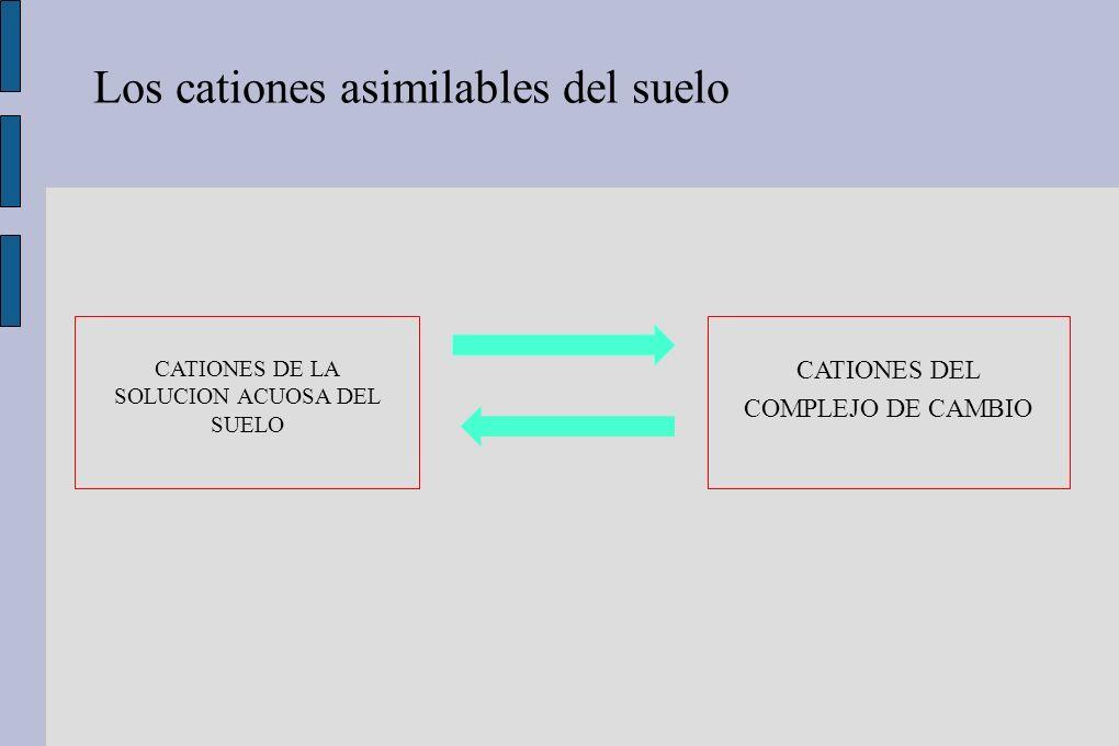 CATIONES DE LA SOLUCION ACUOSA DEL SUELO
