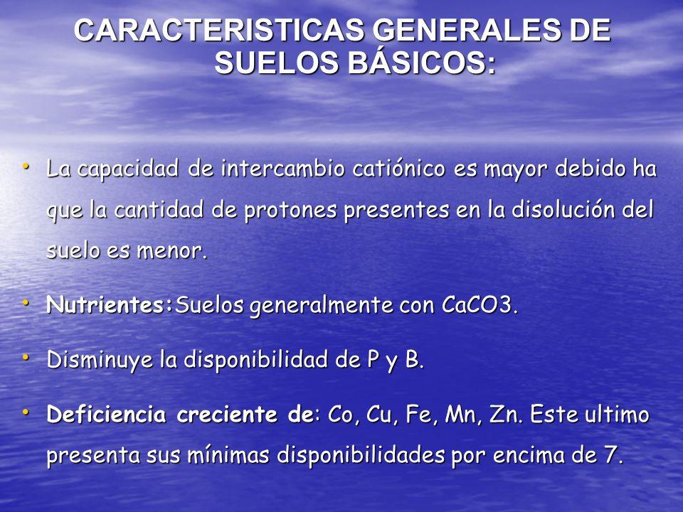 CARACTERISTICAS GENERALES DE SUELOS BÁSICOS: