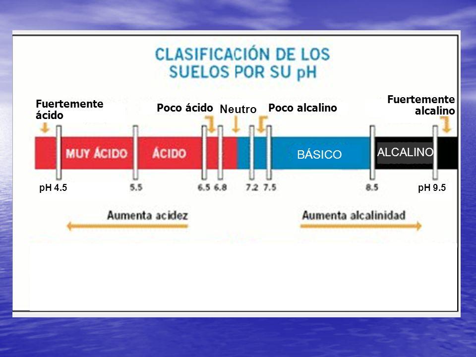 BÁSICO Neutro ALCALINO Fuertemente ácido Poco ácido Poco alcalino