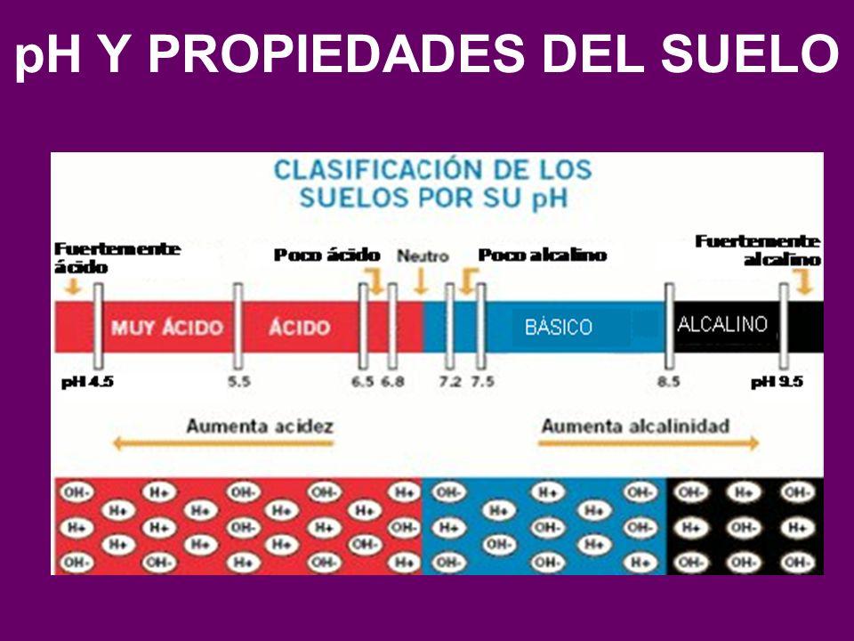 Ph y propiedades del suelo ppt video online descargar for 4 usos del suelo en colombia