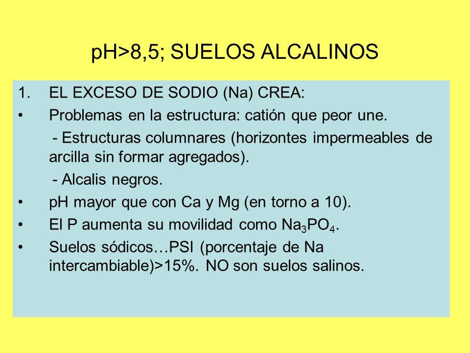pH>8,5; SUELOS ALCALINOS