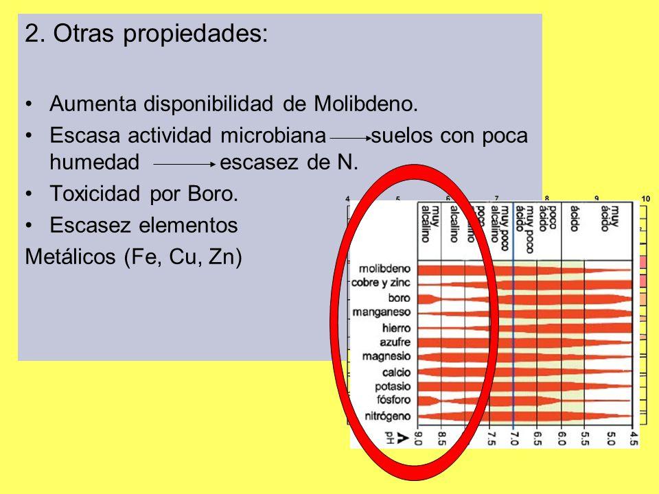 2. Otras propiedades: Aumenta disponibilidad de Molibdeno.