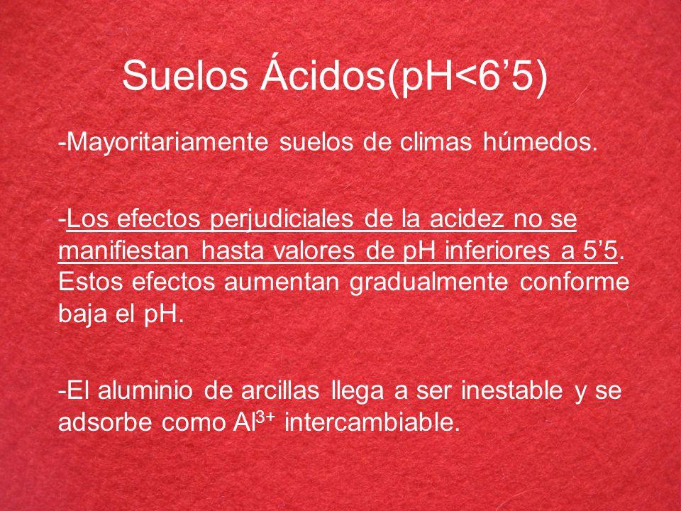 Suelos Ácidos(pH<6'5)