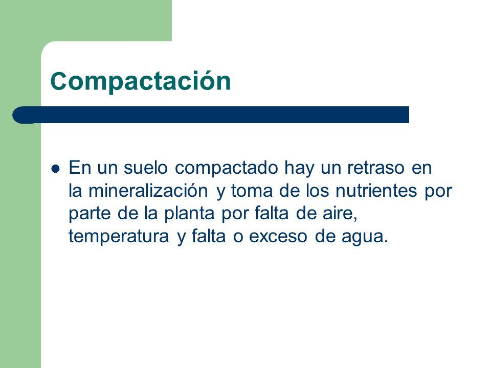 Compactación
