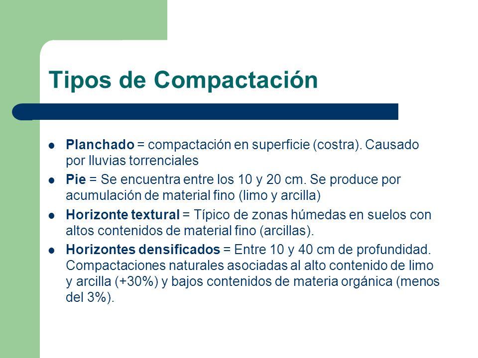 Tipos de Compactación Planchado = compactación en superficie (costra). Causado por lluvias torrenciales.