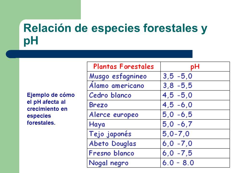 Relación de especies forestales y pH