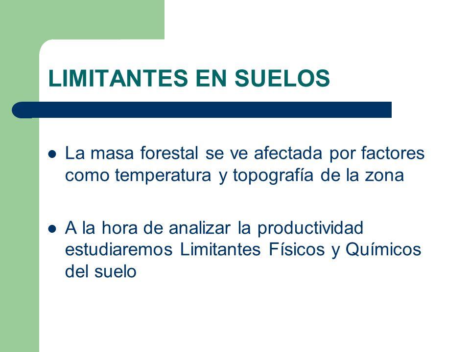 LIMITANTES EN SUELOS La masa forestal se ve afectada por factores como temperatura y topografía de la zona.