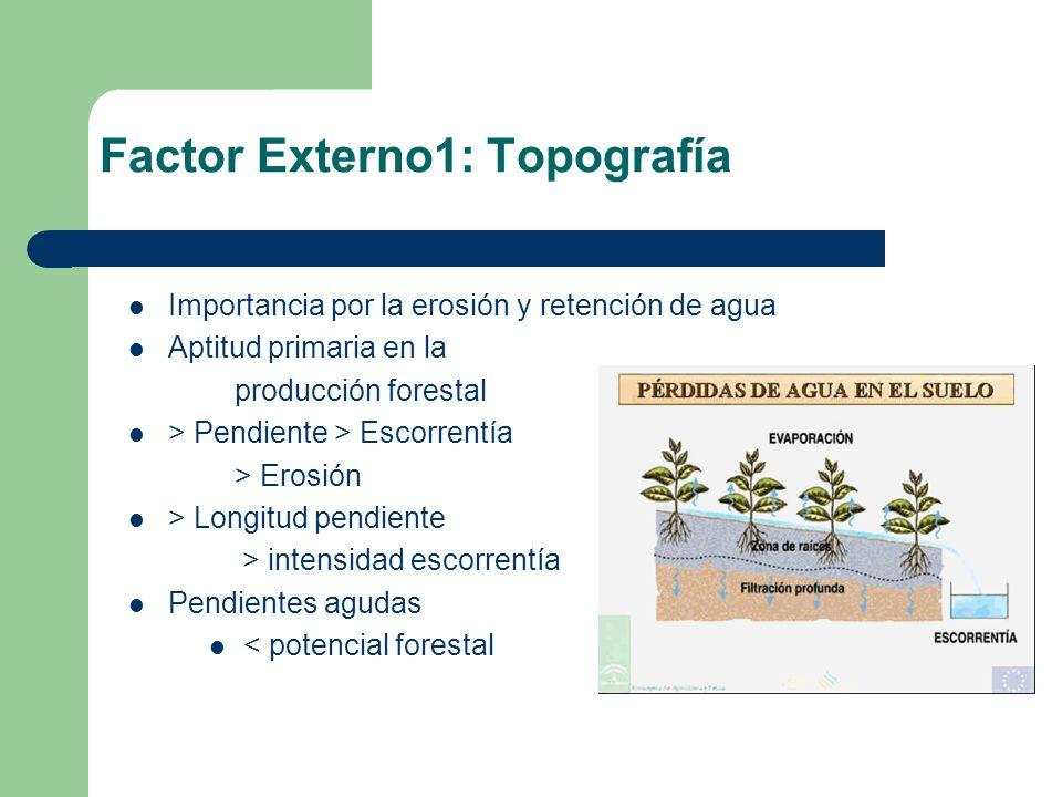 Factor Externo1: Topografía