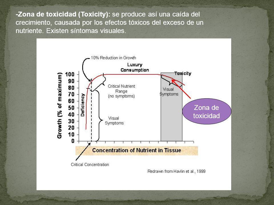 -Zona de toxicidad (Toxicity): se produce así una caída del crecimiento, causada por los efectos tóxicos del exceso de un nutriente. Existen síntomas visuales.