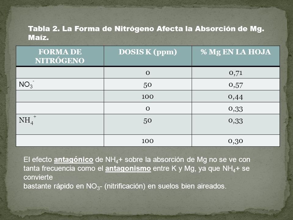 Tabla 2. La Forma de Nitrógeno Afecta la Absorción de Mg. Maíz.