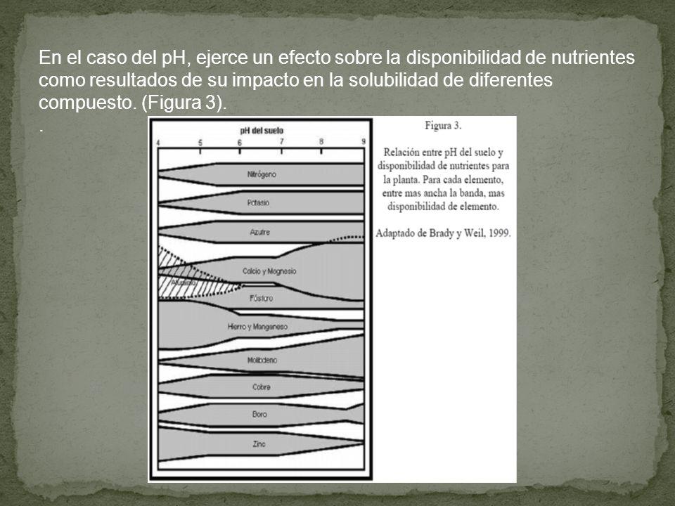 En el caso del pH, ejerce un efecto sobre la disponibilidad de nutrientes como resultados de su impacto en la solubilidad de diferentes compuesto. (Figura 3).
