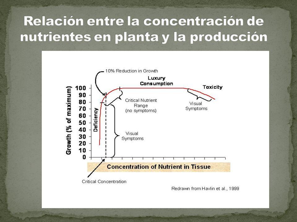 Relación entre la concentración de nutrientes en planta y la producción
