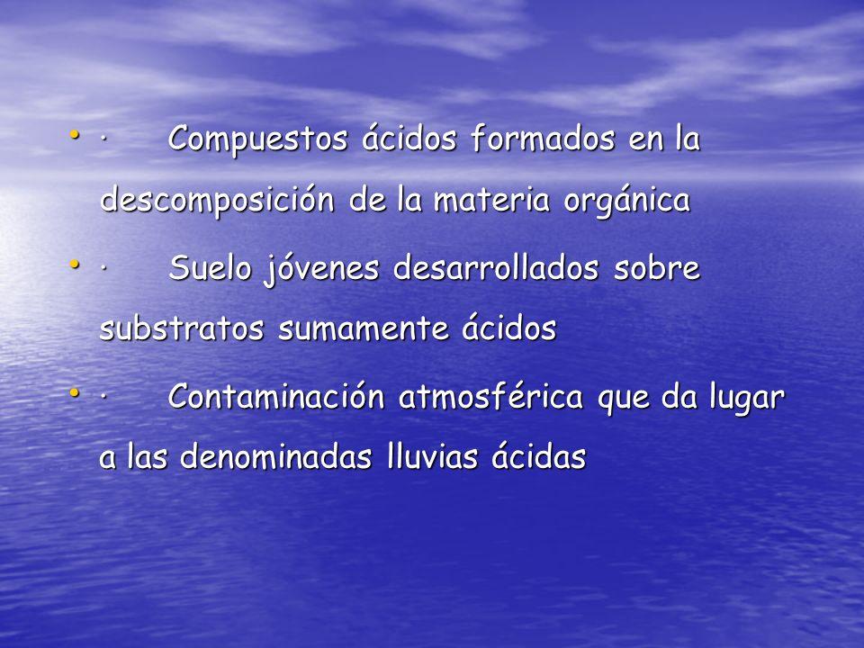 · Compuestos ácidos formados en la descomposición de la materia orgánica