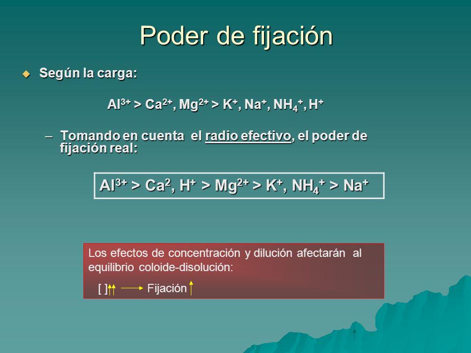 Al3+ > Ca2+, Mg2+ > K+, Na+, NH4+, H+
