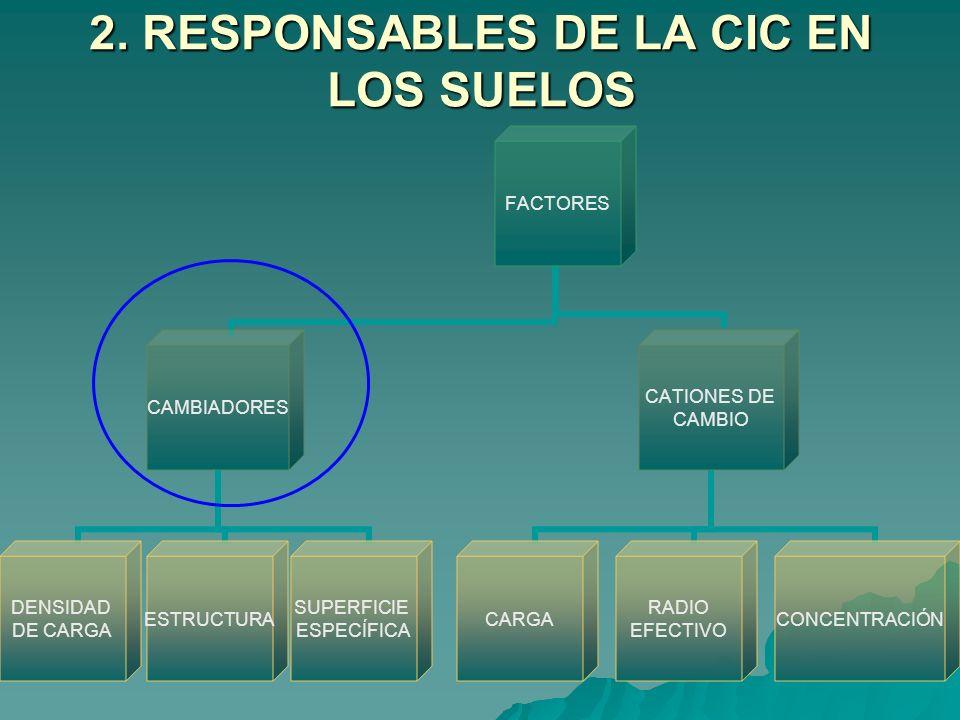 2. RESPONSABLES DE LA CIC EN LOS SUELOS