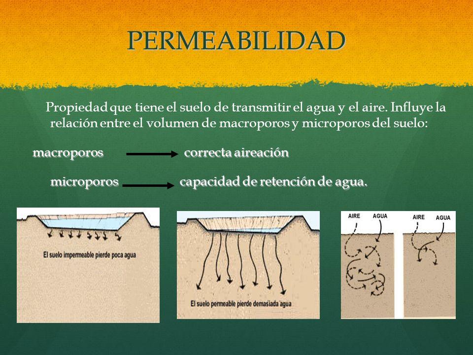 PERMEABILIDAD