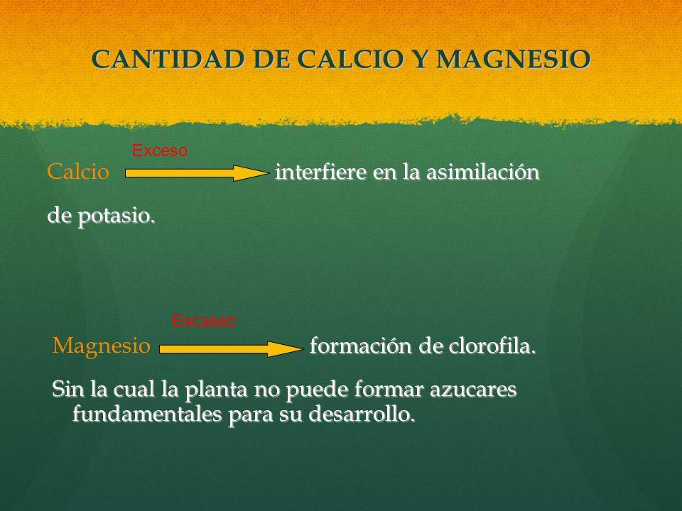 CANTIDAD DE CALCIO Y MAGNESIO
