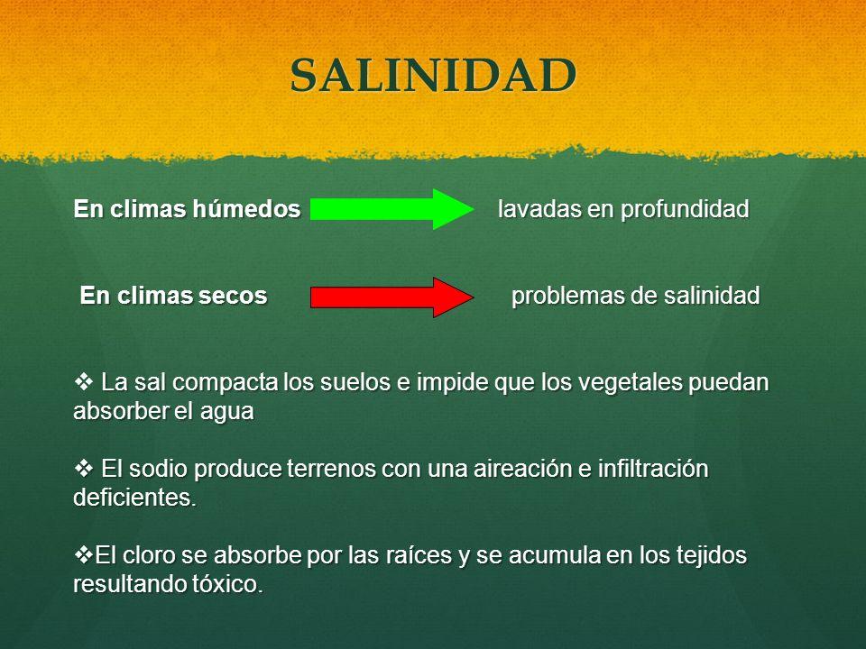 SALINIDAD En climas húmedos lavadas en profundidad