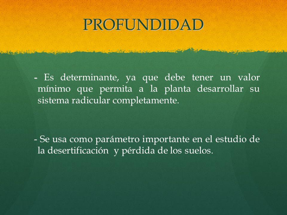 PROFUNDIDAD - Es determinante, ya que debe tener un valor mínimo que permita a la planta desarrollar su sistema radicular completamente.
