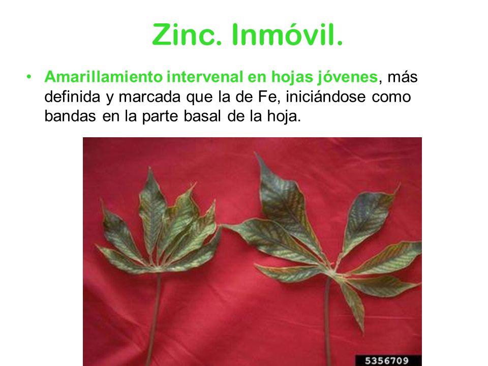 Zinc.