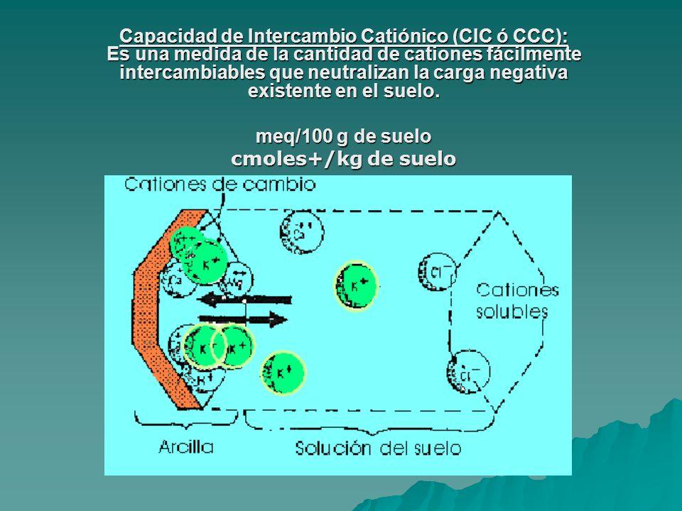 Capacidad de Intercambio Catiónico (CIC ó CCC): Es una medida de la cantidad de cationes fácilmente intercambiables que neutralizan la carga negativa existente en el suelo.