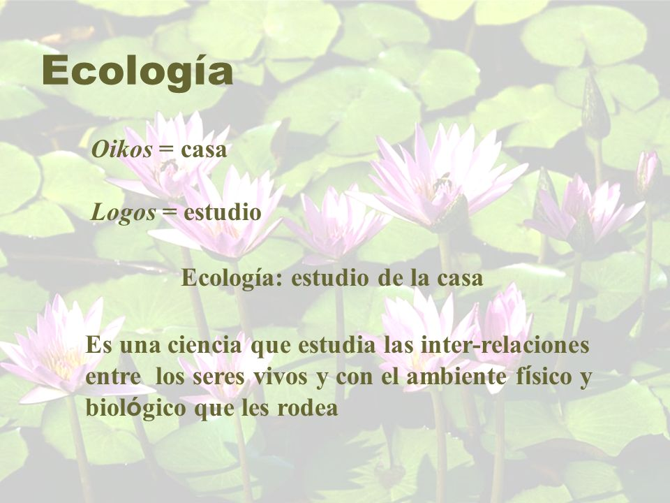 Ecología: estudio de la casa