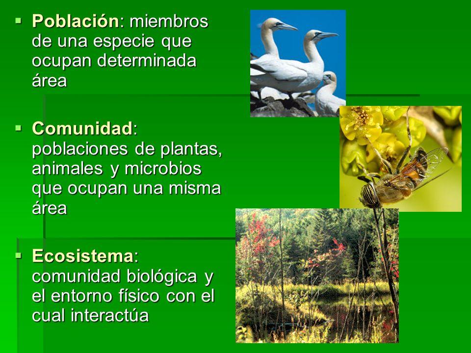 Población: miembros de una especie que ocupan determinada área