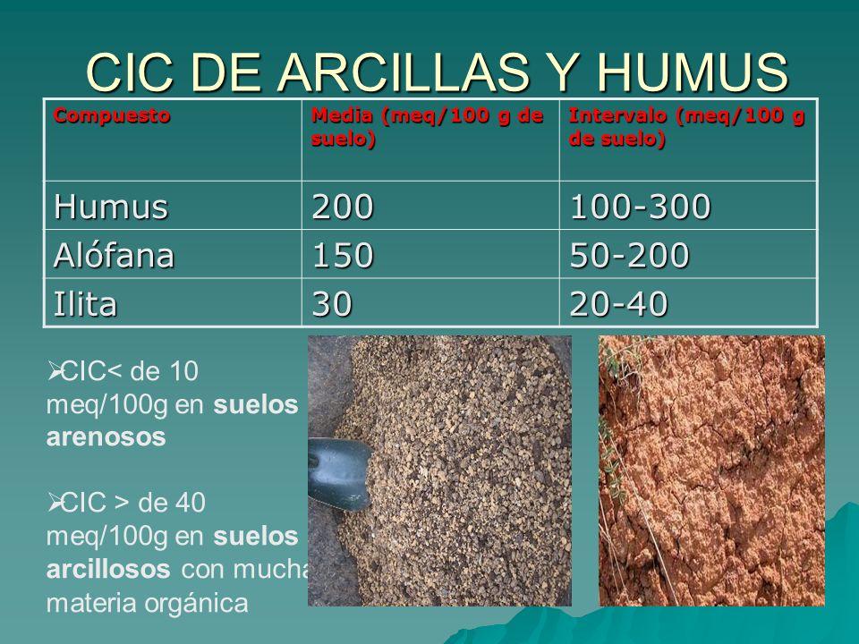 CIC DE ARCILLAS Y HUMUS Humus 200 100-300 Alófana 150 50-200 Ilita 30