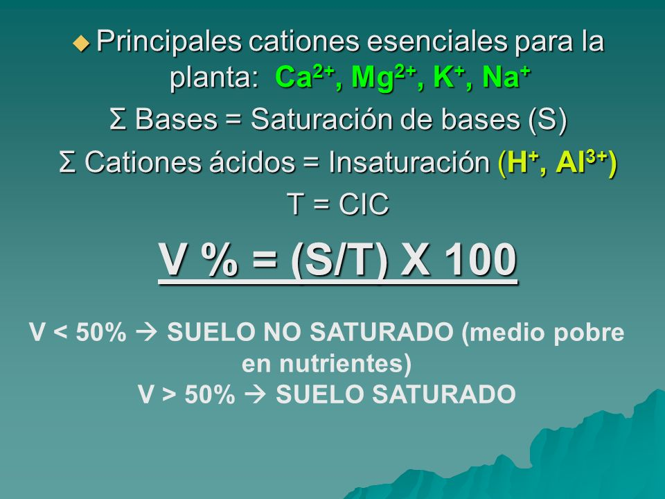 Principales cationes esenciales para la planta: Ca2+, Mg2+, K+, Na+