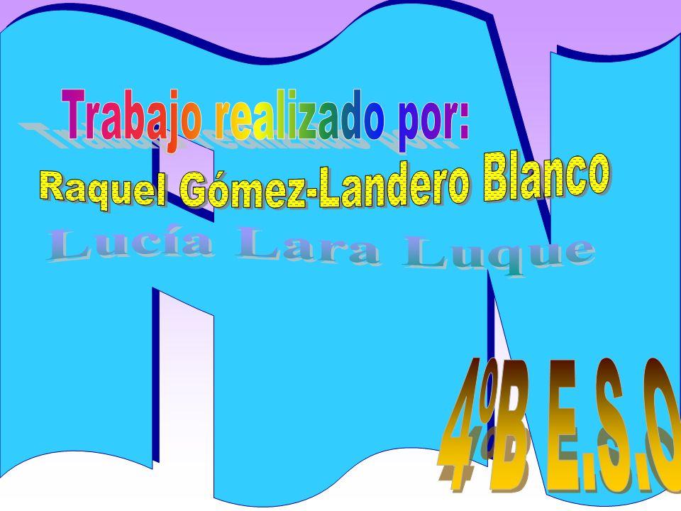 Raquel Gómez-Landero Blanco