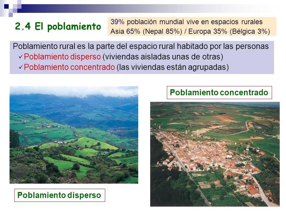39% población mundial vive en espacios rurales