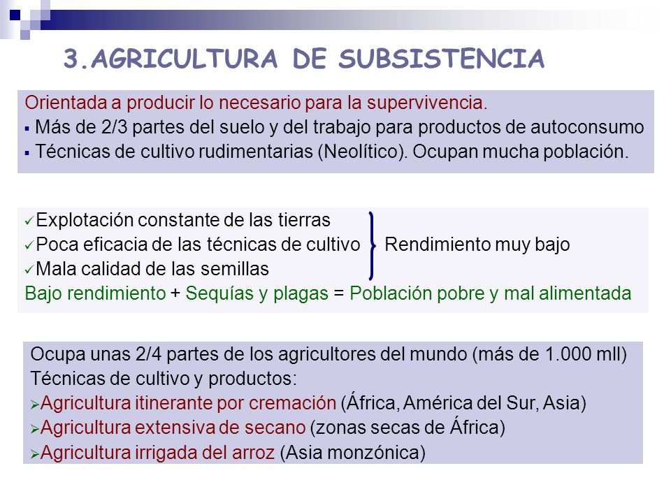 3.AGRICULTURA DE SUBSISTENCIA